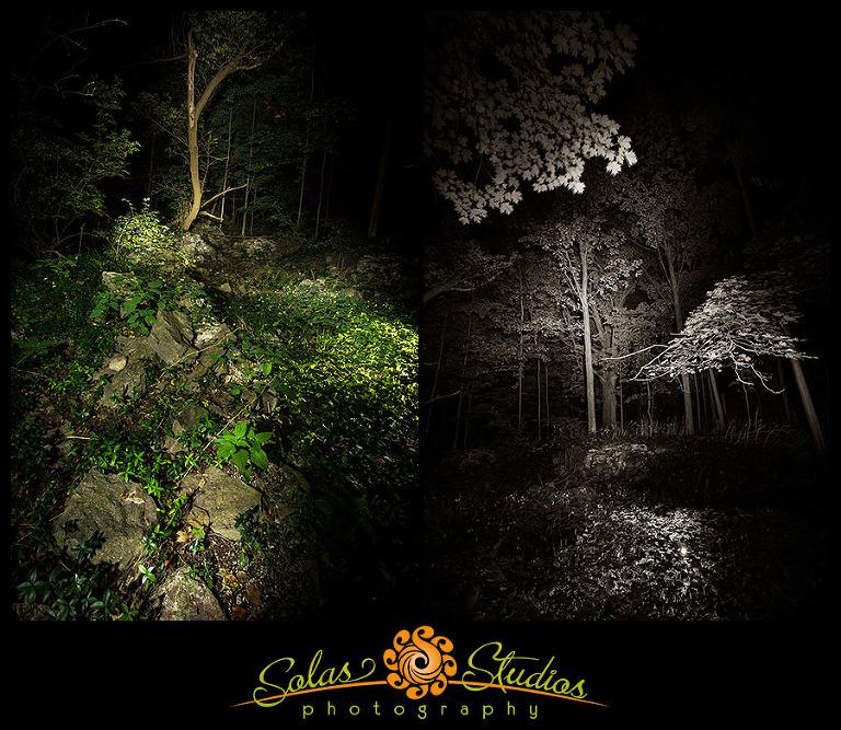 Spooky Woods Camillus NY