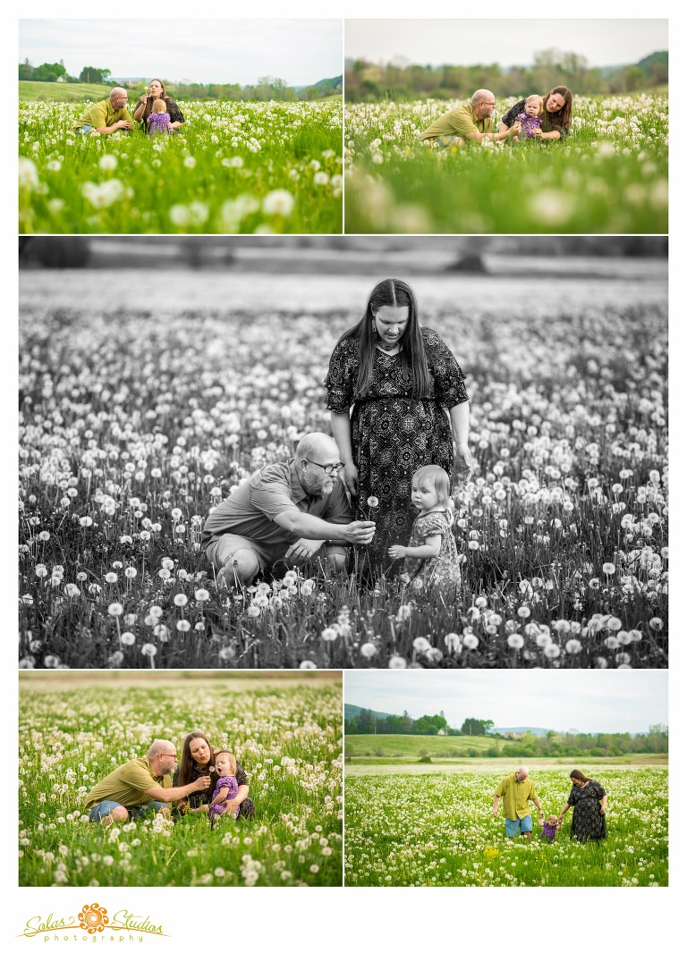 Solas-Studios-Photography-Family-Engagement-Session-Cherry-Valley-2