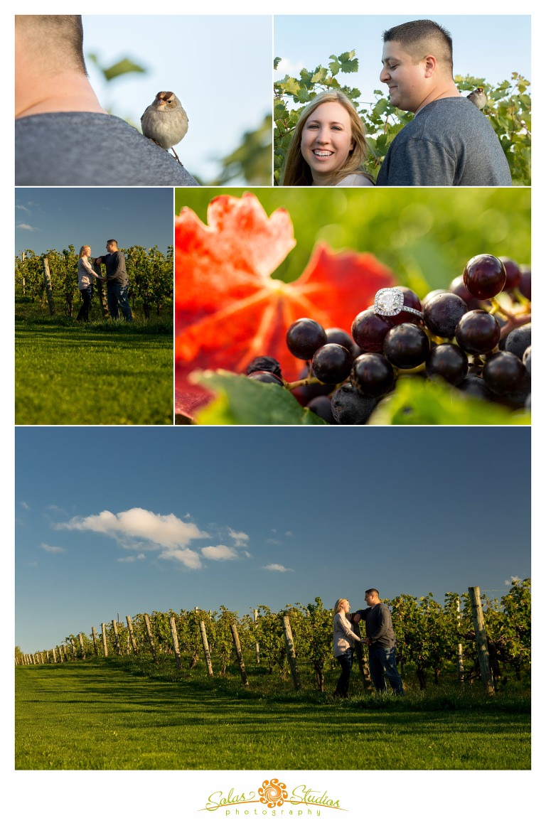 Solas-Studios-Engagement-Session-Ventosa-Vineyards-Geneva-NY-2