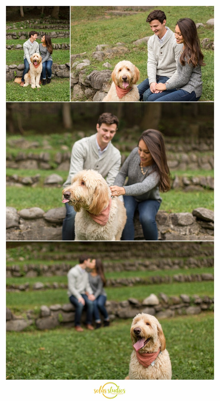 engagement session thornden park 1